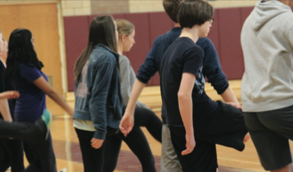 PE Handball Unit Causes Controversy