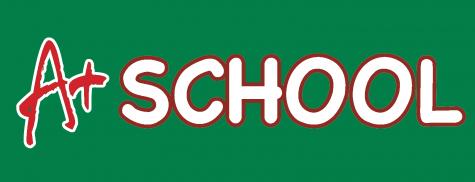 A School Profile