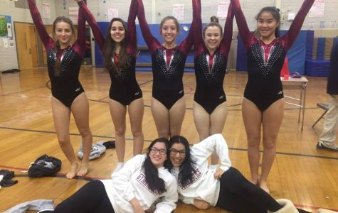 Gymnastics 2017