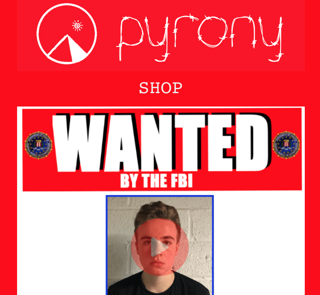 Cover of Pyrony site