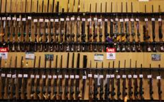 Gun Policies Under Challenge