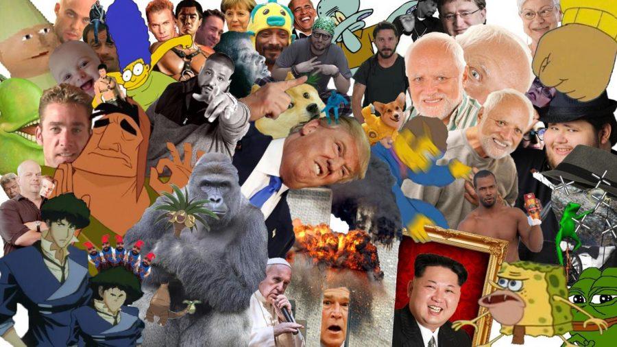 Meme Day Compilation