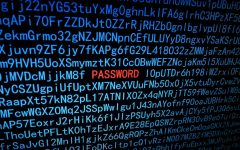 The Top-Secret Lab Report: Password Reset