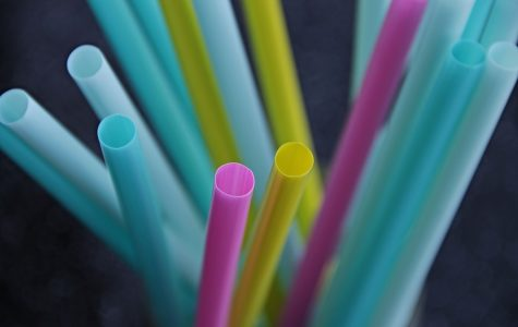 Is Banning Plastic Straws the Best Solution?