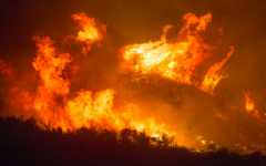 Wildfire Season Strikes California