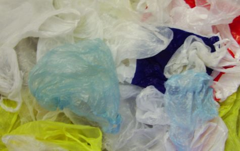 New York Banning Plastic Bags Starting March 2020