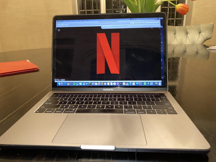 Netflix, the platform in which You is available, and a wildly popular online streaming service.