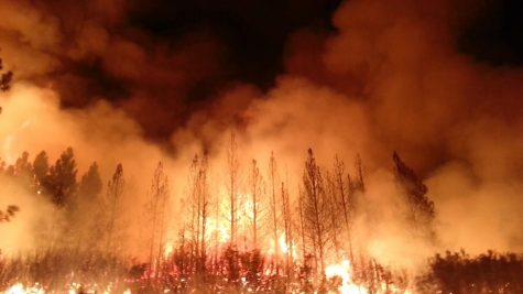 Wristbands for the Wildfires: SHS Student Government Fundraises for Australia