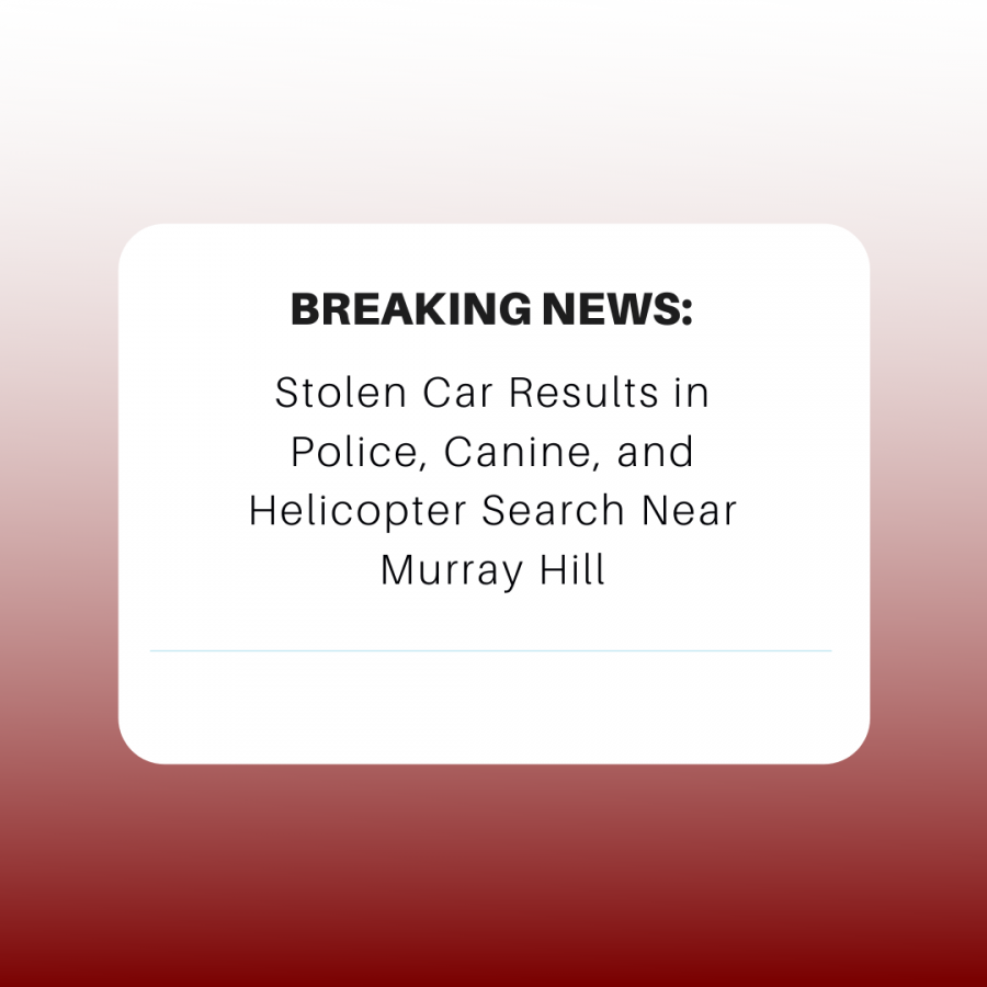 Stolen car results in police, canine, and helicopter search near Murray Hill.