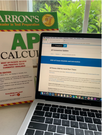 A textbook, computer, and the College Board website - all necessities for this year's AP exams.