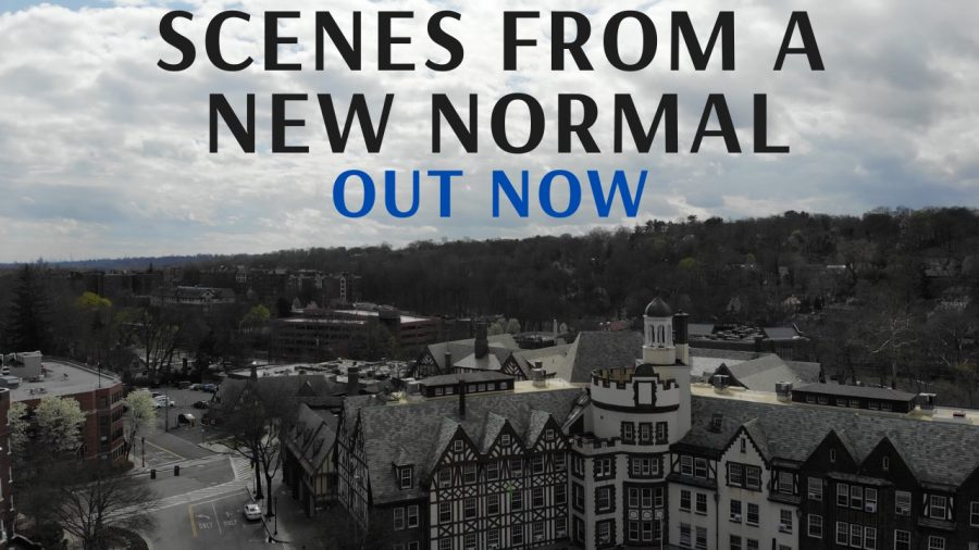 Scenes from a New Normal is one of the first films to be produced entirely over Zoom.
