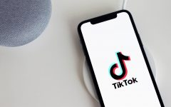 TikTok was launched in 2016 by the Chinese-owned company, ByteDance.