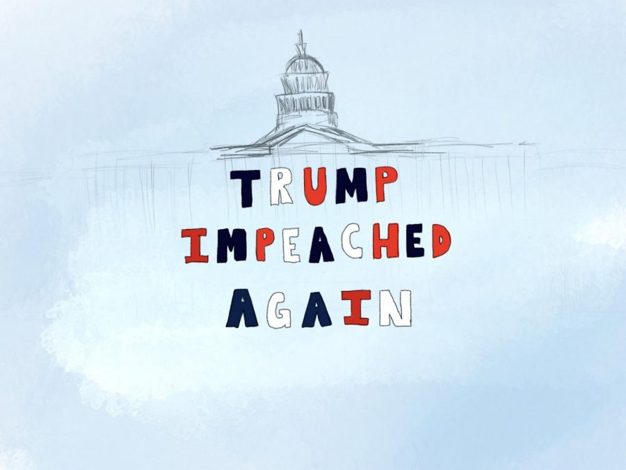 President Trump made history when he became the first United States president to be impeached twice for encouraging a violent revolt against the United States Government.